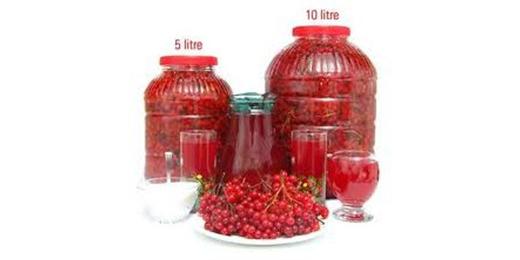 Gilaburu (Gilaboru) Yaklaşık 5 Lt /Yaklaşık 2,5 Kg Meyvesi (Küçük Bidon)